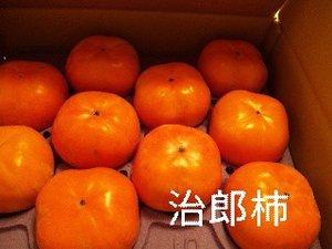 091107_150626_ed_ed